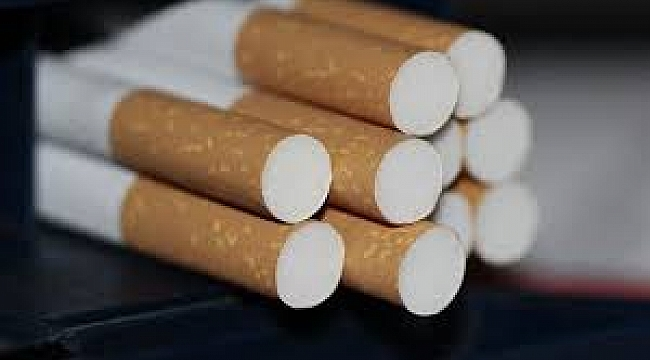 Hollanda'da Uluslararası sigara mafyasına operasyon