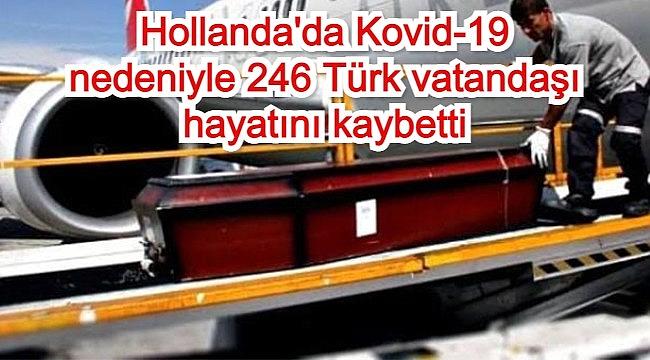 Hollanda'da Kovid-19 nedeniyle 246 Türk vatandaşı hayatını kaybetti