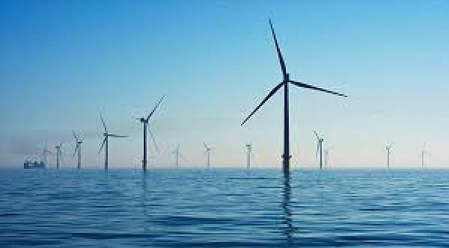 Hollanda'da yenilenebilir enerjinin payı yüzde 11 oldu