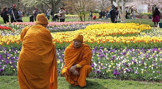 Hollanda Keukenhof (Lale) bahçeleri kapilarini negatif testi olan ziyaretcilere açtı