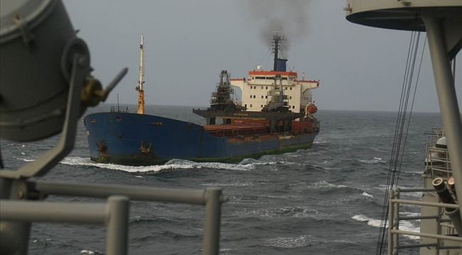 Hollanda'da bir İç hat gemisinde 1000 kök hint kenevir fidesi ele geçirildi