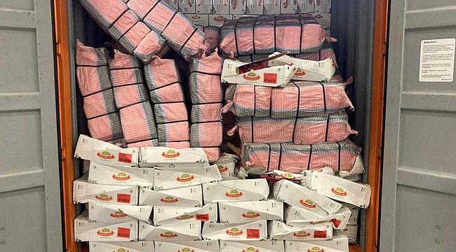 Rotterdam Limanı'nda son 24 saat içinde 2800 kilo kokain ele geçirildi