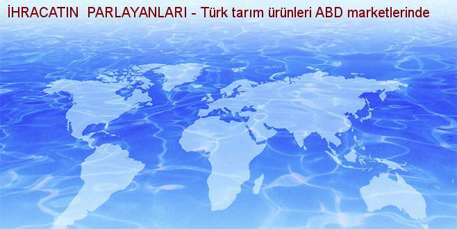 İHRACATIN  PARLAYANLARI - Türk tarım ürünleri ABD marketlerinde