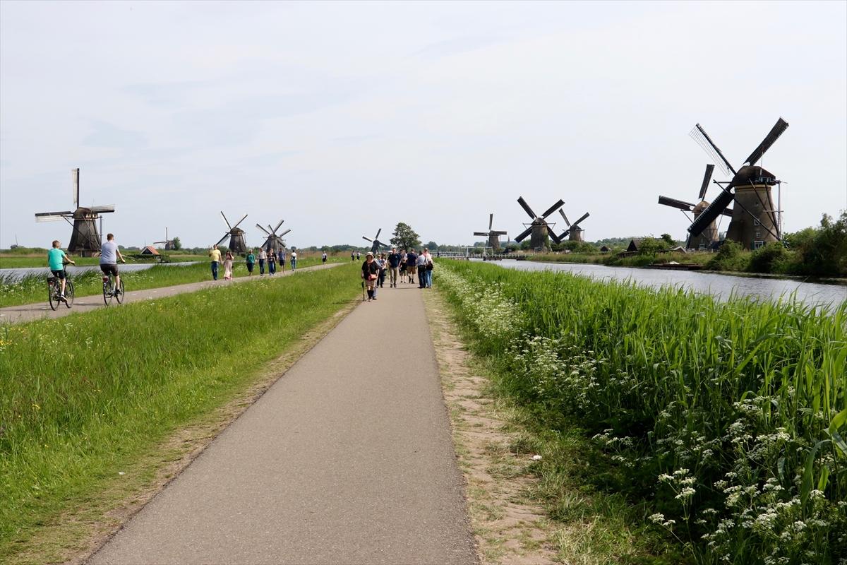Hollanda'da Ulusal Değirmen Günü düzenlendi