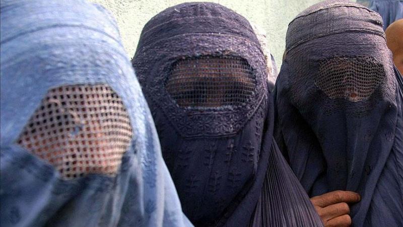 Hollanda'da Burkalı kadınlara sivil müdahale endişesi