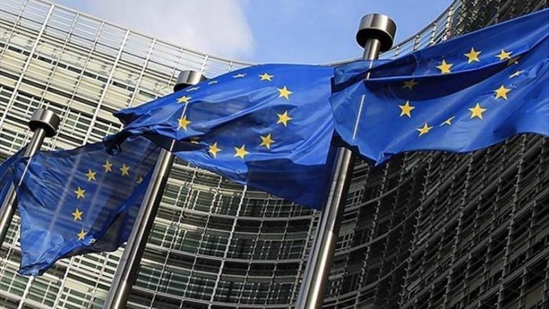 Avrupa Aşırı Sağının AP Seçimleri Planı, İslam, Göçmen ve Türkiye Karşıtlığı Üzerine