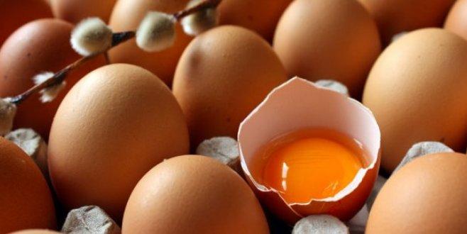 Avrupadaki ilaçlı yumurta krizi Türk ihracatçısını umutlandırdı