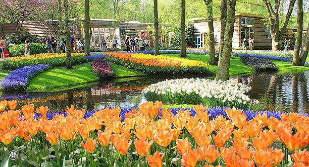 Hollanda turizm tanıtımı yapmayacak