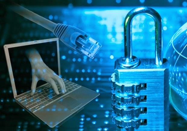 Hollanda'da her 5 şirketten biri siber saldırıya uğradı