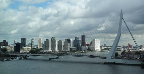 Rotterdam nüfusu yedi bin kişi daha arttı
