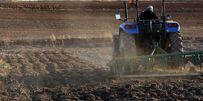 Nederlandse export landbouwproducten in 2019 €94,5 miljard
