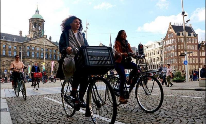 Hollanda'da 21 bin bisiklet sürücüsüne telefon kullanımından dolayı ceza kesildi
