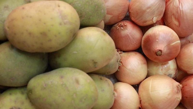Hollanda'da patates ve soğan ihracatı yapan firmadan büyük vurgun