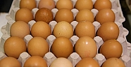 Böcek ilaçlı yumurtalara Güney Korede de rastlandı