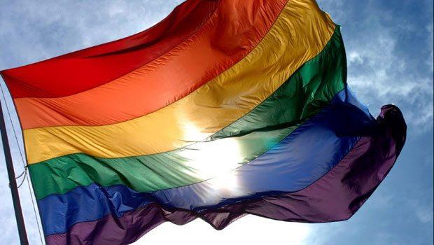 Eşcinsel evliliğe izin verilmesiyle ülkede eşcinsel çift sayısı 20 bine ulaştı